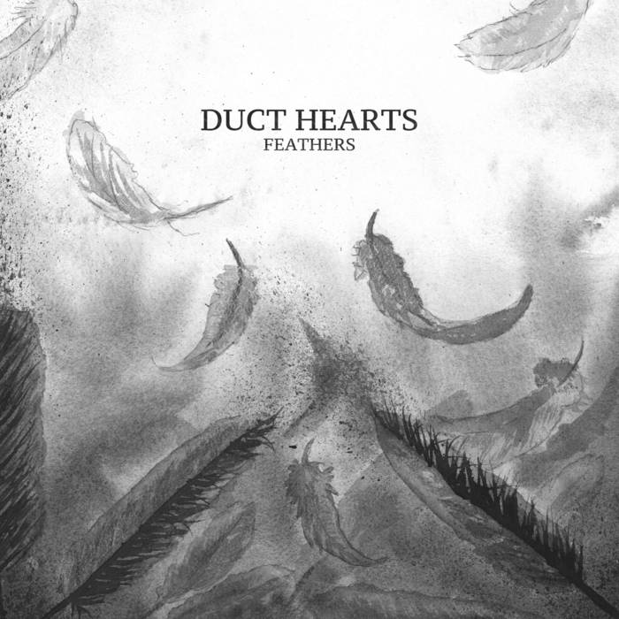 "Duct Hearts - Feathers 12"" lp"