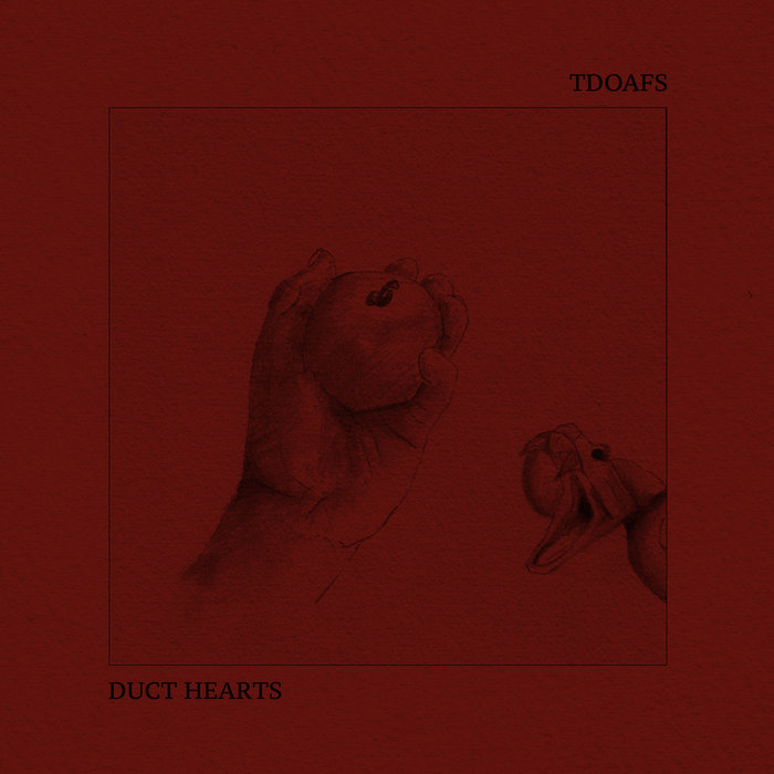 tdoafs / duct hearts - split 6""
