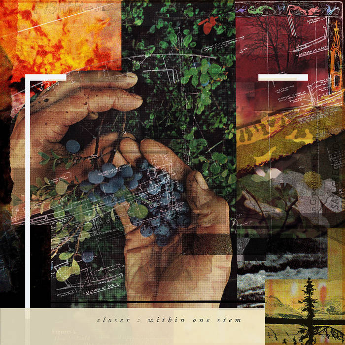 "Closer - Within One Stem 12"" lp [black]"